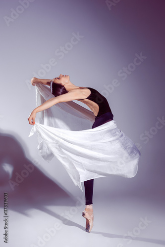 Poster Ballerina in black outfit posing on toes, studio background.