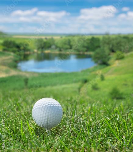 Fototapeta Golf ball ready to be hit on the green grass.