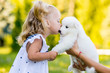 little girl kissing her puppy Samoyed breed