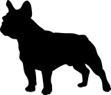 French bulldog vector silhouette - 117450217