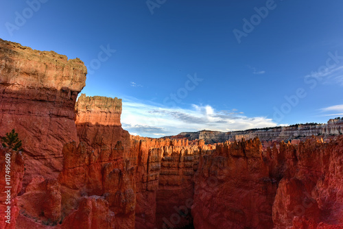 Foto op Plexiglas Bordeaux Bryce Canyon National Park