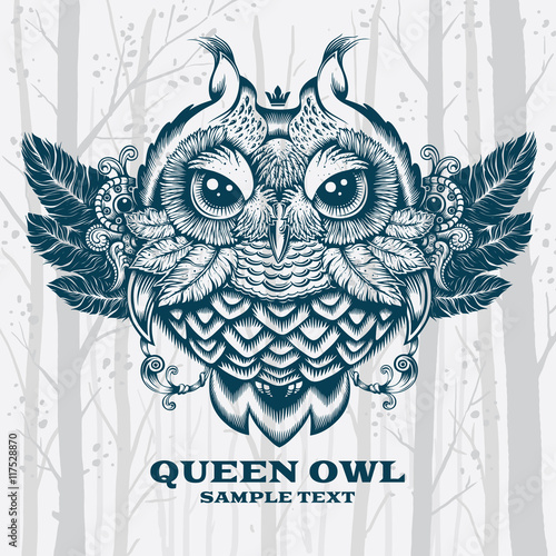 Illustration Owl. Decorative graphics on White background