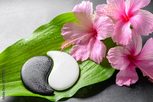 Fotobehang Spa beautiful spa concept of pink hibiscus flowers and Yin-Yang of s