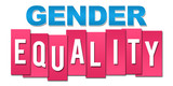 Gender Equality Pink Blue Stripes