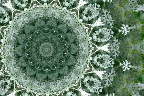 kaleidoscope pattern in silvery green