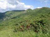 Slovakia mountain from Snilovske sedlo. Velky Rozsutec in background. Mala fatra, Slovakia