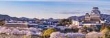 Japan Himeji castle with light up in sakura cherry blossom season - 117626247