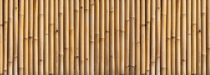 Bamboo fence © Brad Pict