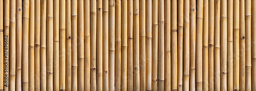 Plexiglas Bamboe Bamboo fence
