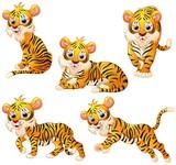 Tiger cartoon set collection