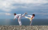 Тренировка двух детей на пляже: тхэквондо, спорт
