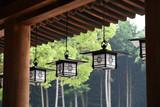 橿原神宮の灯籠
