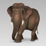 Illustration of Indian elephant