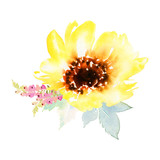 Watercolor sunflowers - 117792004