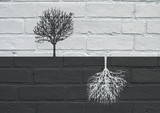Urban art, Black and white trees