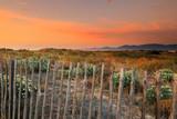 Paysage méditerranéen: littoral côtier dans les pyrénées orientale - Languedoc-Roussillon - France
