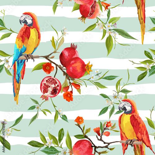 Fototapeta Tropical Flowers, Pomegranates and Parrot Birds Background