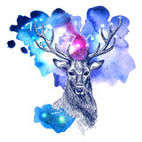 animal on watercolor space