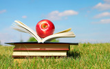 Back to School. Open Book and Apple on Green Grass