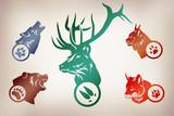 Иллюстрация по следам животных. Волк, Медведь, Рысь, Лиса, Олень. - 118065692