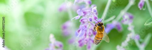 Aluminium Bee Honeybee collecting pollen