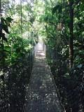 Path less taken - hanging bridges over tropical rainforest.