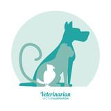 dog cat bird silhouette veterinarian pet clinic icon, vector illustration - 118145243