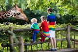 Kids feeding giraffe at the zoo