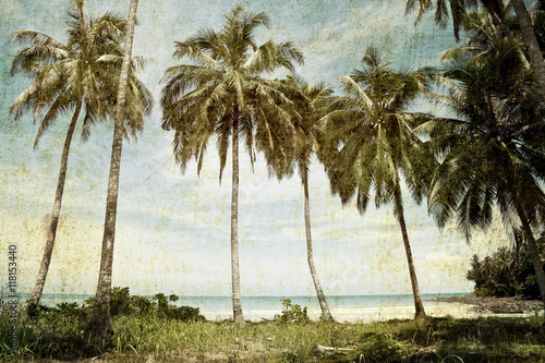 vintage palm trees background - 118153440