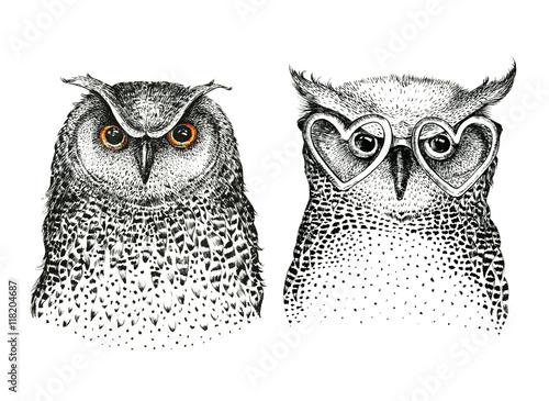 Hand drawn black white illustration owl fly bird. Art Coloring - 118204687
