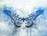 Blue butterfly painted with water colors