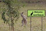welcome to Australia sign with wild kangaroo
