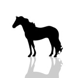 Vector silhouette of horse.