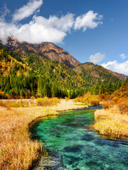 Beautiful river with azure crystal clear water among fall fields © efired