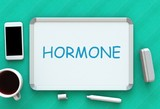 HORMONE, message on whiteboard, smart phone and coffee on table, 3D rendering