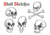 Skull artistic pencil sketch icons