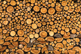 BACKGROUND, WALL OF WOOD STUMP - 118383849