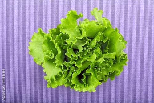 Poster Lettuce.