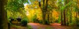Malerisch bunter Herbst in einem schönen Naturpark bei weichem Licht
