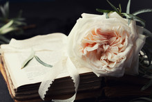 Still life of vintage rose flower and old books on black surface. Beautiful retro card.