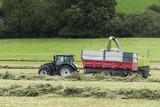 tracteur agricole chargeant le foin concassé