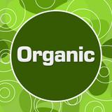 Organic Green Random Circular Background