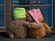 Two friends looking out the window at the windows of the house. Toys colorful hats bear cubs. Embrace the . Concept - love, friendship, support, evening together