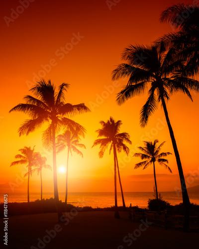 Aluminium Strand Tropical sunset