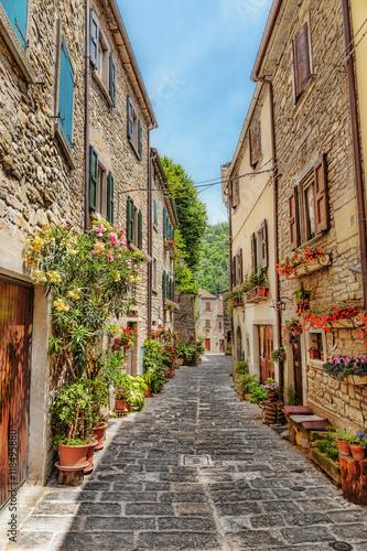 Zdjęcia na płótnie, fototapety na wymiar, obrazy na ścianę : Narrow paved street in the old town in Italy