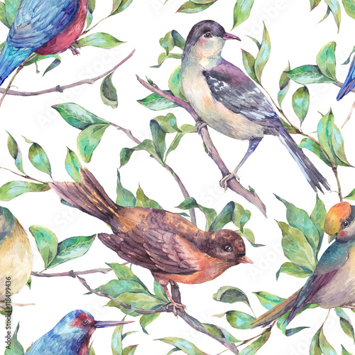 Watercolor seamless pattern, birds on a branch - 118499436
