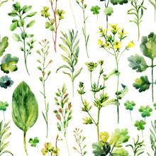 Aquarelle mauvaises herbes de prairie et d'herbes seamless pattern