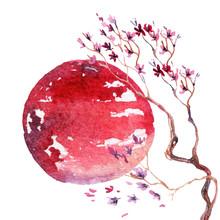 fleur de cerisier du Japon.
