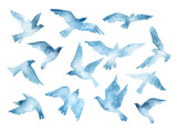 Flying bird silhouettes with watercolor texture isolated on white background - 118520014