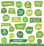 Bio eco and organic modern badges and labels collection